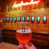 LEVEDURA BEER – Para beber cervejas artesanais de um jeito diferente!